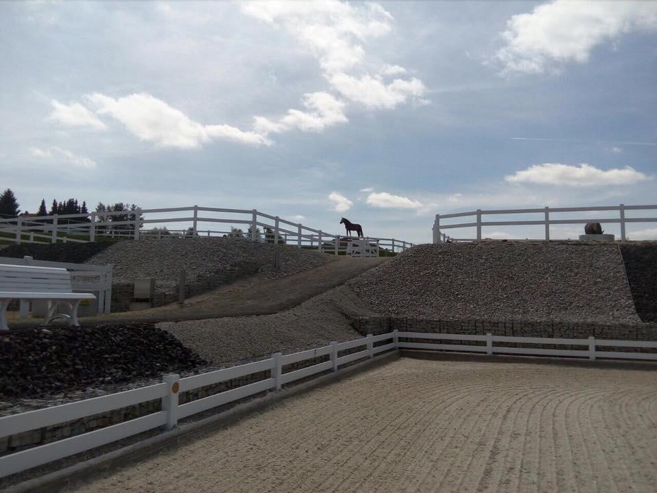 Sandplatz Und PAddocks