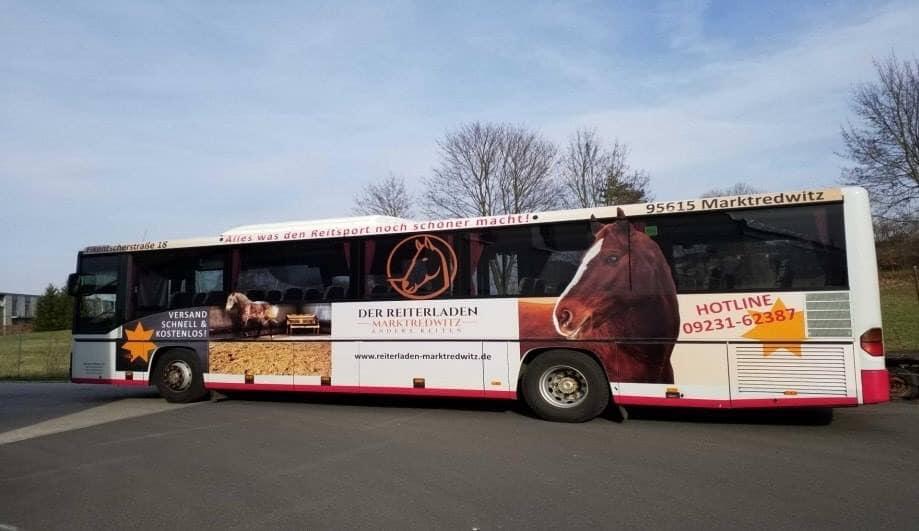 Das Ist Der Beweis: Pferde Fahren Bus